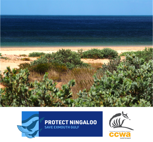 image of Ask the Environment Minister to Protect Ningaloo